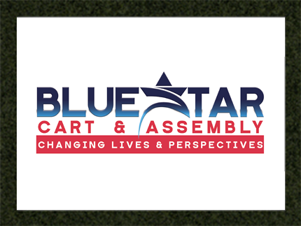 LNP Services Logo Design - Blue Star Logo