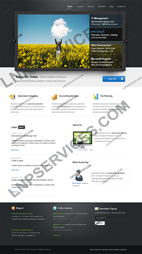 LNP Services Web Design - IT Management Portal